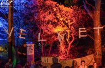 velvet festival 2017