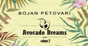 Nedugo nakon prvog, Bojan Petovari objavio je nastavak EP 'Avocado Dreams vol. 2'