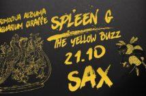 spleen g